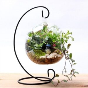 12 Inch 30 CM Hanging Holder Crystal Terrarium Container Decoration